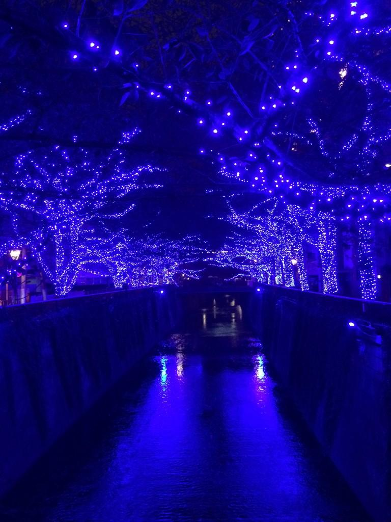 Nakameguro Christmas Illumination