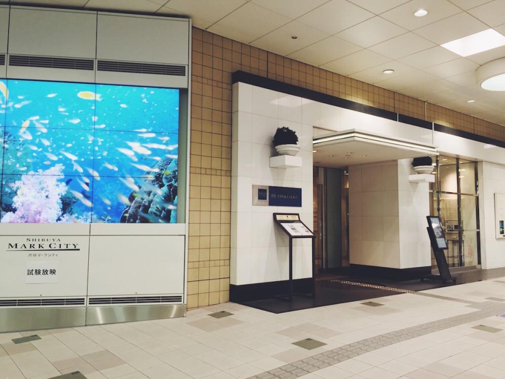 Shibuya Excel Hotel Tokyu Elevator Lobby Entrance